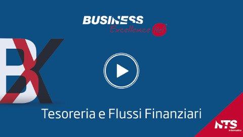 Business Net Tesoreria e Flussi Finanziari